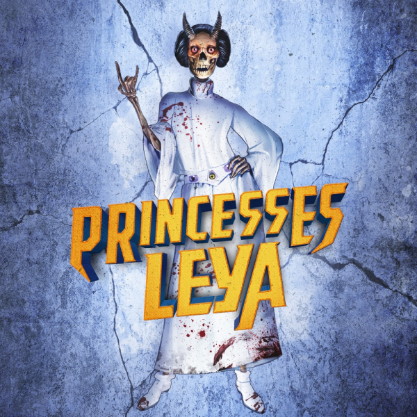 Artwork princesses leya bestfit 600x600